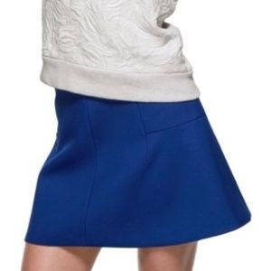 J. Crew Royal Blue Fluted Skirt